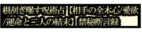 根刮ぎ曝す呪術占【相手の全本心/愛欲/運命と二人の結末】禁秘断言録