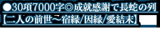 ●30項7000字◎成就感謝で長蛇の列【二人の前世~宿縁/因縁/愛結末】