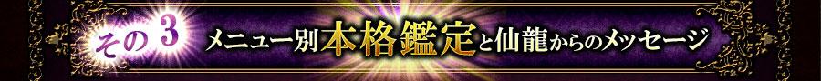 その3メニュー別本格鑑定と仙龍からのメッセージ