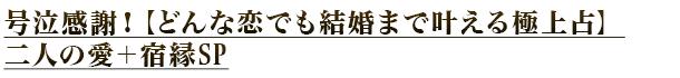 号泣感謝!【どんな恋でも結婚まで叶える極上占】二人の愛+宿縁SP